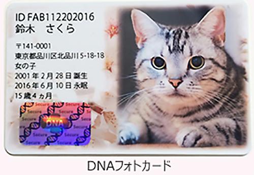 ペットのDNA