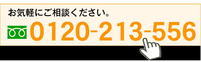 0120-213-556